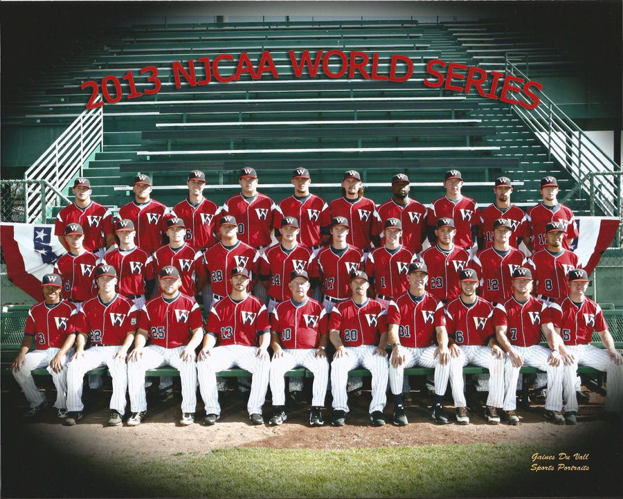 2013 World Series Team