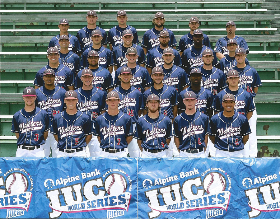 2015 World Series Team
