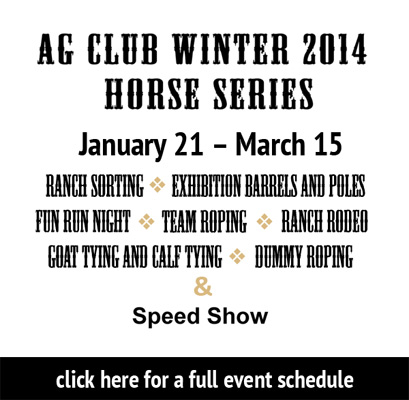 winter horse series 2014